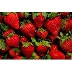 Разогревающая смазка и лосьон для массажа Wet Fun Flavors Strawberry - клубника- 89 мл