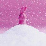 Вибратор-зайчик Lil`Vibe Lil'Rabbit для стимуляции клитора и эрогенных зон - 13 см